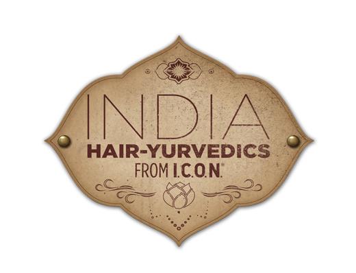 India_Logo_2